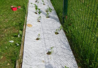 jardin microcreche chazelles ahtoupie association enfance jeu